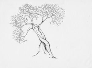arbre-en-corps-1094-x-850-300x223