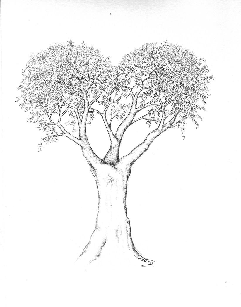 arbre_coeur_2-823-x-1049